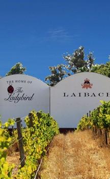 Laibach Selection